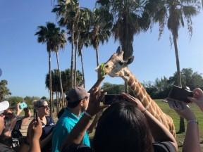 Tourism Blog 5